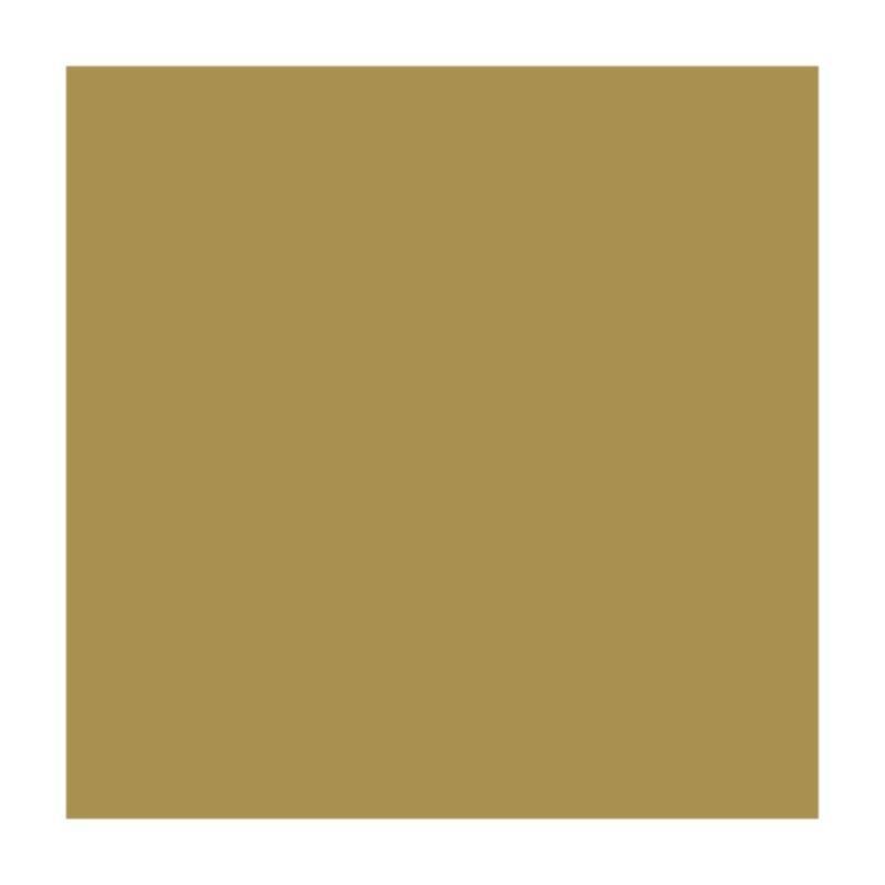 Бумага для дизайна B1 Folia Fotokarton 70x100см 300г/м2 золото (4001868681659)