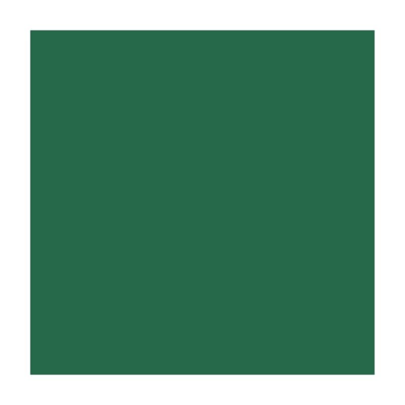 Папір для дизайну B2 Folia Fotokarton50x70см №58 Хвойно-зелена 300г/м2 4001868061581