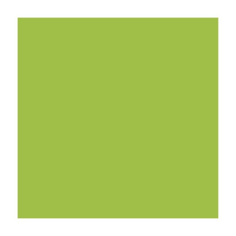 Бумага для дизайна A4 Folia Fotokarton 21х29,7см 300г/м2 салатовый (4823064981001)