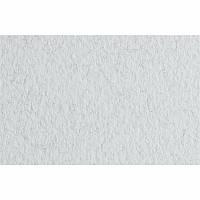 Бумага для пастели B2 Fabriano Tiziano 50x70см 160г/м2 белый brina среднее зерно (8001348157595)