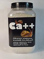 Кальцієва мінеральна добавка для равликів Ca ++ , банку 600 мл/500 г