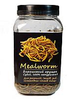 Борошняний Хрущак сухий Mealworm корм для рептилій, банку 600 мл/100 г