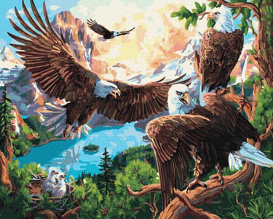 Картина за номерами - Орлине гніздо Brushme 40*50 див. (GX35729), фото 2