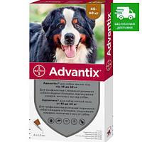 Advantix Bayer для собак від 40 до 60 кг, 1 уп.
