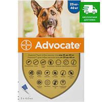 Advocate Bayer для собак більше 25 кг, 1 уп.