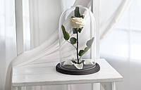 Вечная роза в колбе 32х22 см. (БЕЛАЯ) Гарантия 3 года