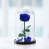 Вечная роза в колбе 32х22 см. (Синяя) Гарантия 3 года