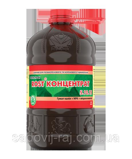 Рост-концетрат Калийний NPK 5+10+15 4 л ROST