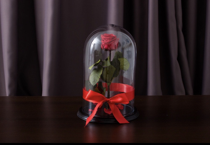 Подарок на 14 февраля роза в стеклянной колбе  32х22 см. (КРАСНАЯ)