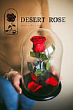 Подарок на 14 февраля роза в стеклянной колбе  32х22 см. (КРАСНАЯ), фото 2