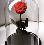 Подарок на 14 февраля роза в стеклянной колбе  32х22 см. (КРАСНАЯ), фото 4