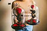 Подарок на 14 февраля роза в стеклянной колбе  32х22 см. (КРАСНАЯ), фото 6