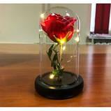Стабілізована ТРОЯНДА В КОЛБІ З LED ПІДСВІЧУВАННЯМ, нічник, вічна троянда, 17 СМ Найкращий подарунок!, фото 2