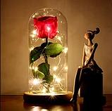 Стабілізована ТРОЯНДА В КОЛБІ З LED ПІДСВІЧУВАННЯМ, нічник, вічна троянда, 17 СМ Найкращий подарунок!, фото 5