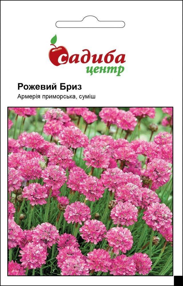 Рожевий бриз насіння армерії (Hem Zaden)