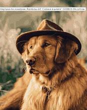 """Картина за номерами """"Собака в капелюсі"""""""