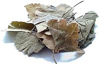 Гинкго Билоба, лист 100 грамм