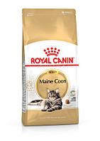 Royal Canin (Роял Канін) Maine Coon Adult - Сухий корм з птахом для дорослих кішок породи Мейн кун (10 кг)