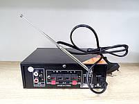 Підсилювач потужності звуку, AV-699B, фото 2