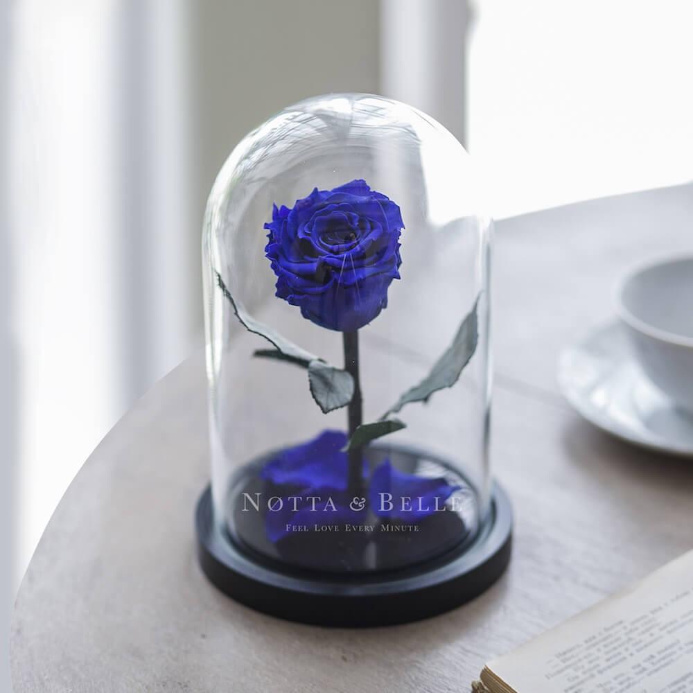 Оригінальний подарунок | Троянда в колбі з LED підсвічуванням маленька синя