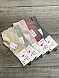 Шкарпетки модал жіночі середні Z & N однотонні 35-40 12 шт в уп світле асорті, фото 5