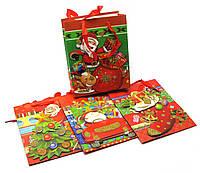 Пакет подарочный с апликацией Новый год  12 шт/уп  23х18 см