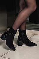 Ботинки женские замшевые на каблуке черные демисезонные