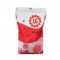 Семена подсолнечника ЛГ 5663 под Евро-Лайтнинг