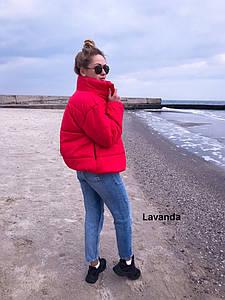 Модная красная куртка 0195 (AM)