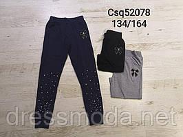 Спортивні штани для дівчаток Seagull 134-164р.р