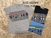 Футболки для мальчиков оптом, Active Sport, 116-146 рр.,  № XHZ-0034N