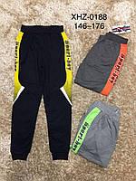 Трикотажные спортивные брюки для мальчиков Active Sports 146-176 р.р.