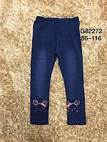 Леггинсы  под джинс для девочек Grace 116-146 р.р, фото 1