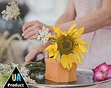 """Губка / флористична піна суха помаранчева ТМ """"Beflower"""" від виробника 20шт/уп, фото 4"""
