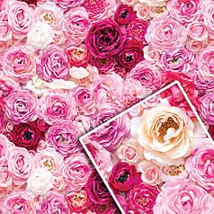 """Подарочная упаковочная бумага """"Нежные розовые розы"""" 70*100см 10л/уп (112)"""