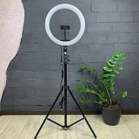 Набор Блогера 2в1 Кольцевая LED Лампа 26см 12W с Держателем + Штатив Кільцева лампа блогерська