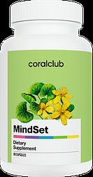 МайндСет (MindSet) - питание головного мозга, улучшает память, внимание, дает энергию