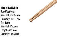 Барабанні палички Western Wood Hornbeam 5A Hybrid, 5AH