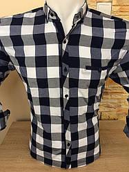 Чоловіча сорочка в клітинку Paul Jack