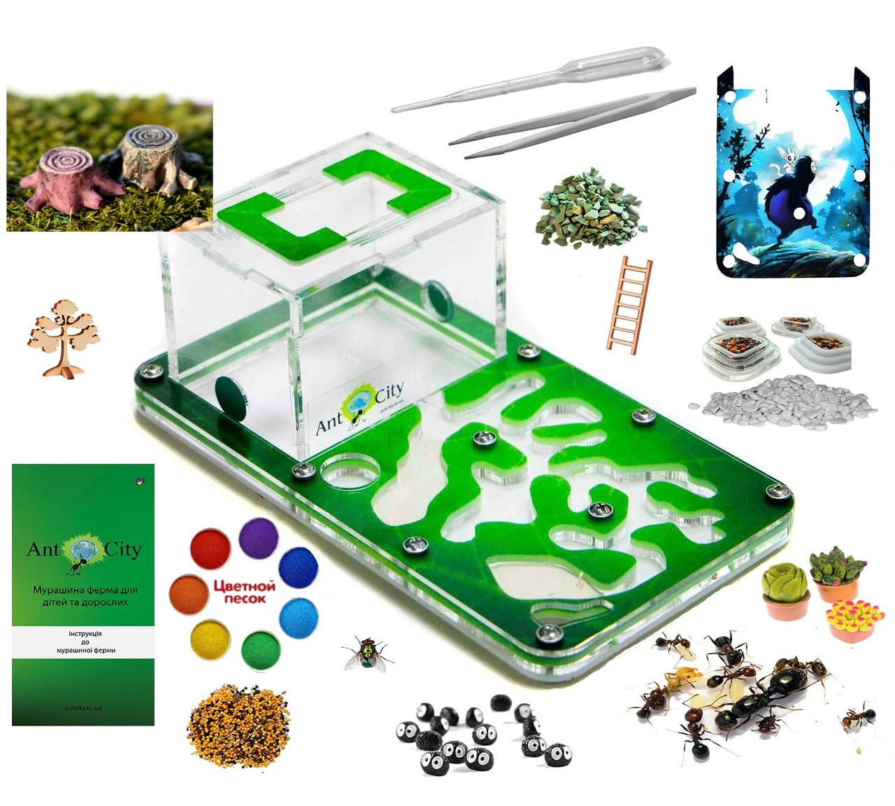 """Мурашина ферма Смарт """"Амазонка"""" Комплект Преміум + колонія мурашок, корм, декор (18x10x7 см)"""