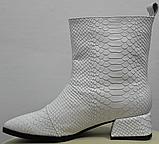 Белые сапожки женские кожаные от производителя модель РИ333-4, фото 3