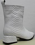 Белые сапожки женские кожаные от производителя модель РИ333-4, фото 4