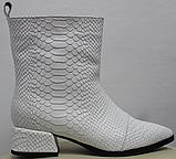 Белые сапожки женские кожаные от производителя модель РИ333-4, фото 2