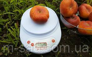 """Персик інжировий""""Світ Ринг(урожайний,смачний), фото 2"""