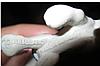 Брелок на ключі собака долматинец сувенір Німеччина, фото 4