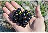 Штамбовая Черная смороина Титания (саженцы), фото 4