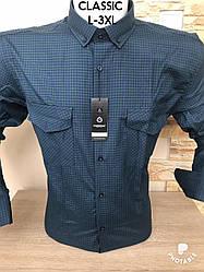 Котонова сорочка Fiorenzo в клітку