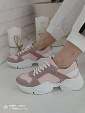 Модні жіночі замшеві кросівки, пудра, фото 2