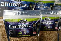 Гаммарус Gammarus 75g, фото 3