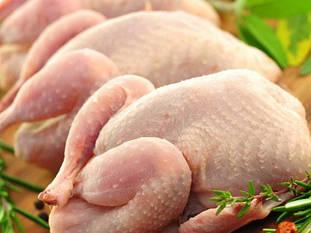 Куры, куриная продукция
